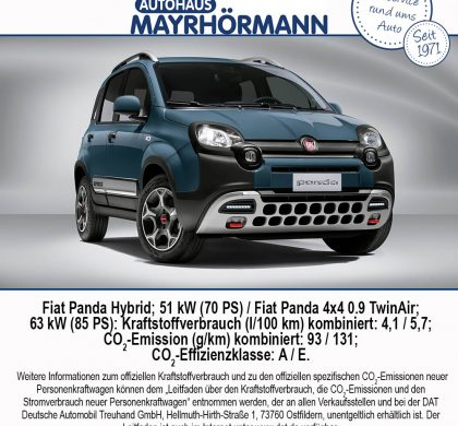 Auto des Monats 11-2020 Fiat Panda - Blog News // Autohaus Mayrhörmann GmbH